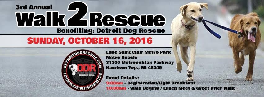 walk-to-rescue-banner.jpg