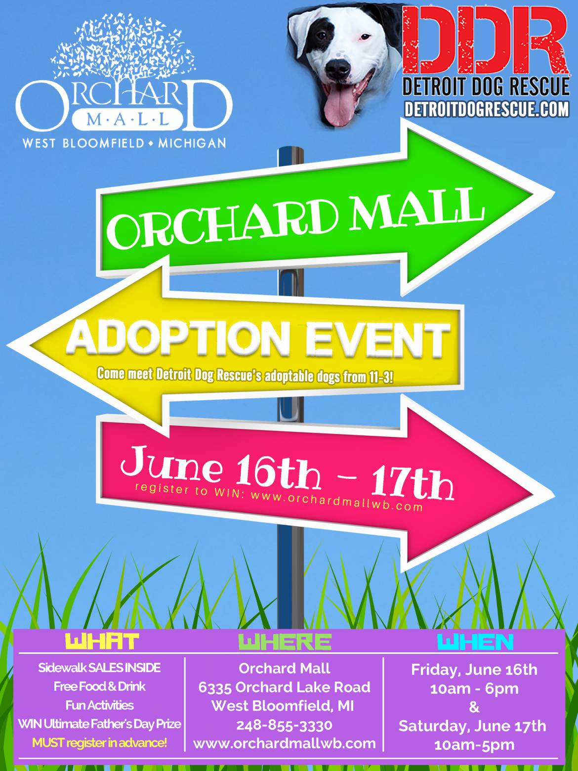 Orchard-Mall-Event-Flier-1.jpg