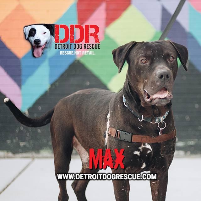 max-editthumb-e1525211652160.jpg