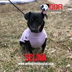 selina-editthumb-e1525211483321.jpg
