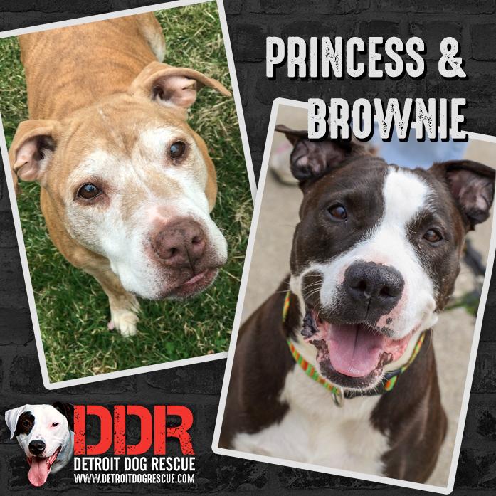 Princess & Brownie