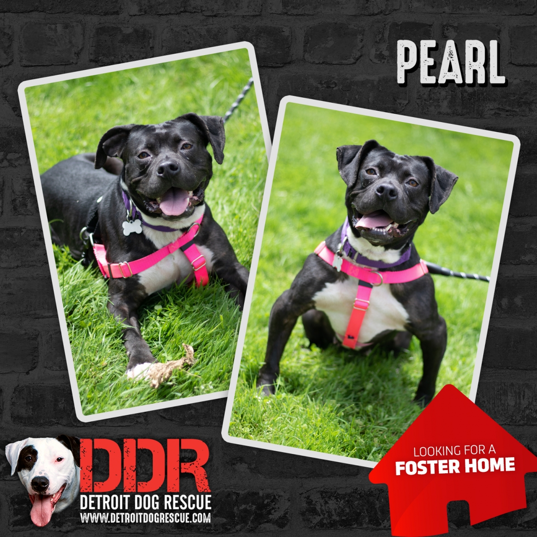 pearl-thumb-1.jpg