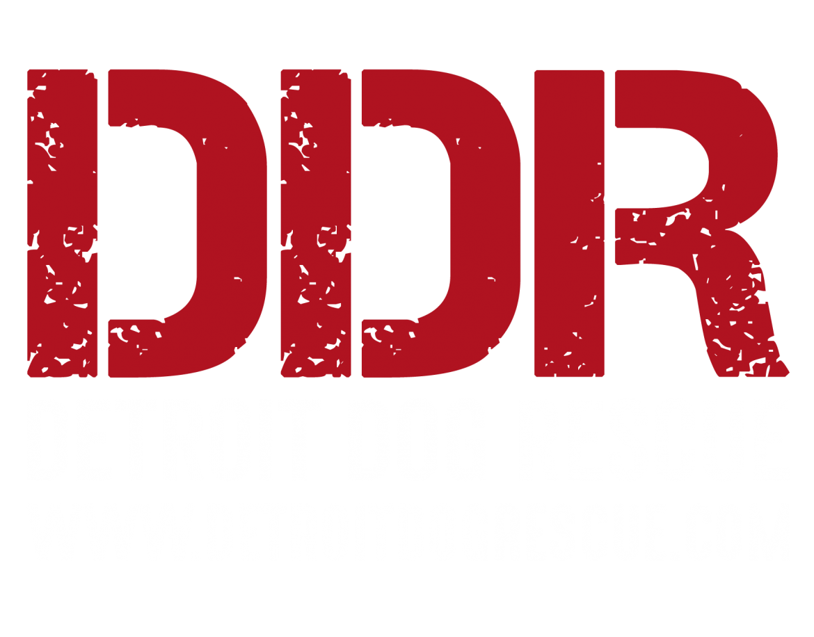 detroitdogrescue_logo_light.png