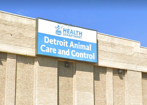 Rescuer Warns Of Sick Dogs At Aging Detroit Animal Control Facility