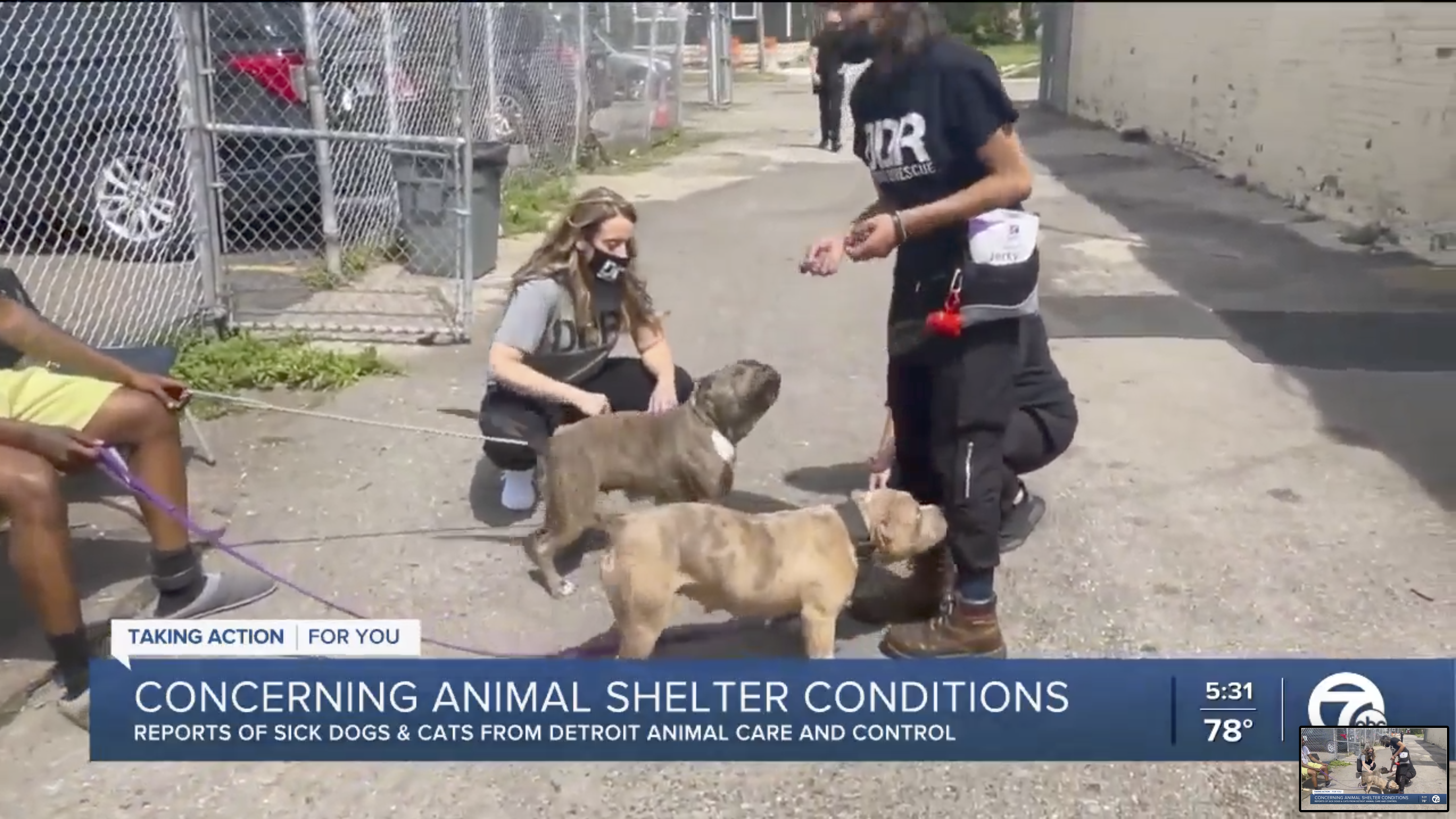 Head of Detroit Dog Rescue urges changes amid sick dogs, cats at animal control